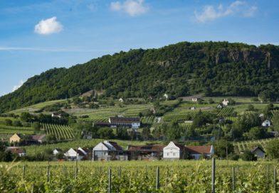 A somlói Tornai Pincészet újabb Trófea-díjat nyert a londoni International Wine Challenge-en. GasztroMagazin 2019.