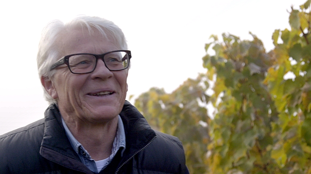 Bacsó András, a Tokaj-Oremus pincészet igazgatója